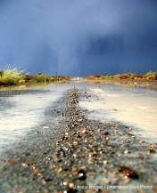 rain.dreamstimefree_209423