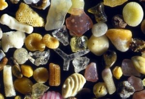 Sand+under+a+250x+microscope.+I+used+to+eat+it_520f50_4023659