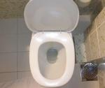 toilet.cc.8801986560_173fa40664_z (1)