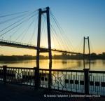 bridge.dreamstimefree_216398