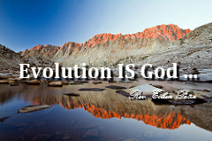 cc-evolution